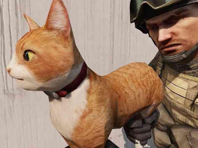 FPSゲーム SPECIAL FORCE 2の武器・・・猫銃? Cat Gun?