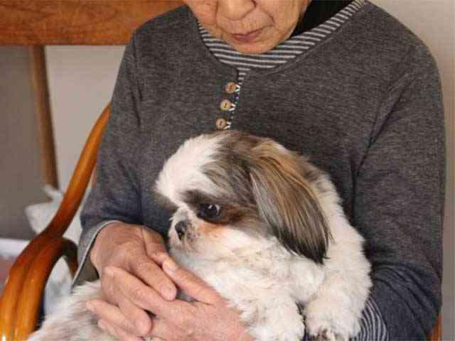 ばあちゃんの乙女心、戦時中の恥ずかしかった思い出。