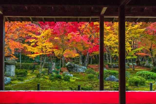 太平洋戦争中、京都の街を最も壊したのは日本人だった?!