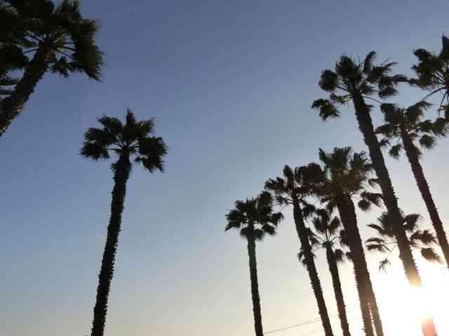幻のロサンゼルスの戦い?!