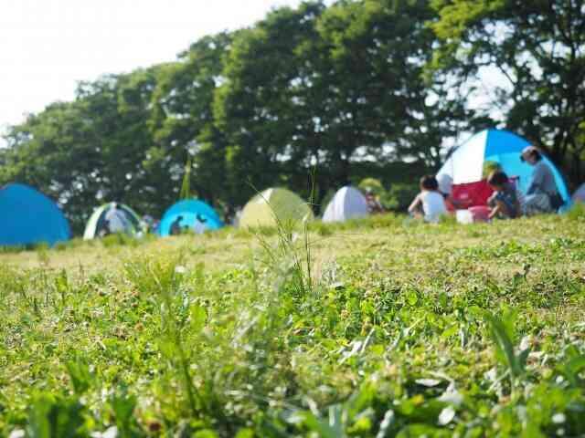 テントと寝袋があればキャンプはできる