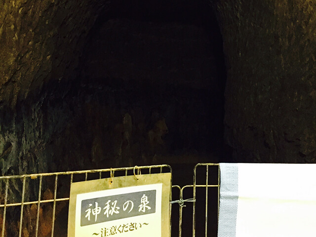 そこは地底の楽園でした?!洞窟座敷「地底の楽園」